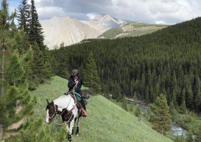Horse on mountain ledge